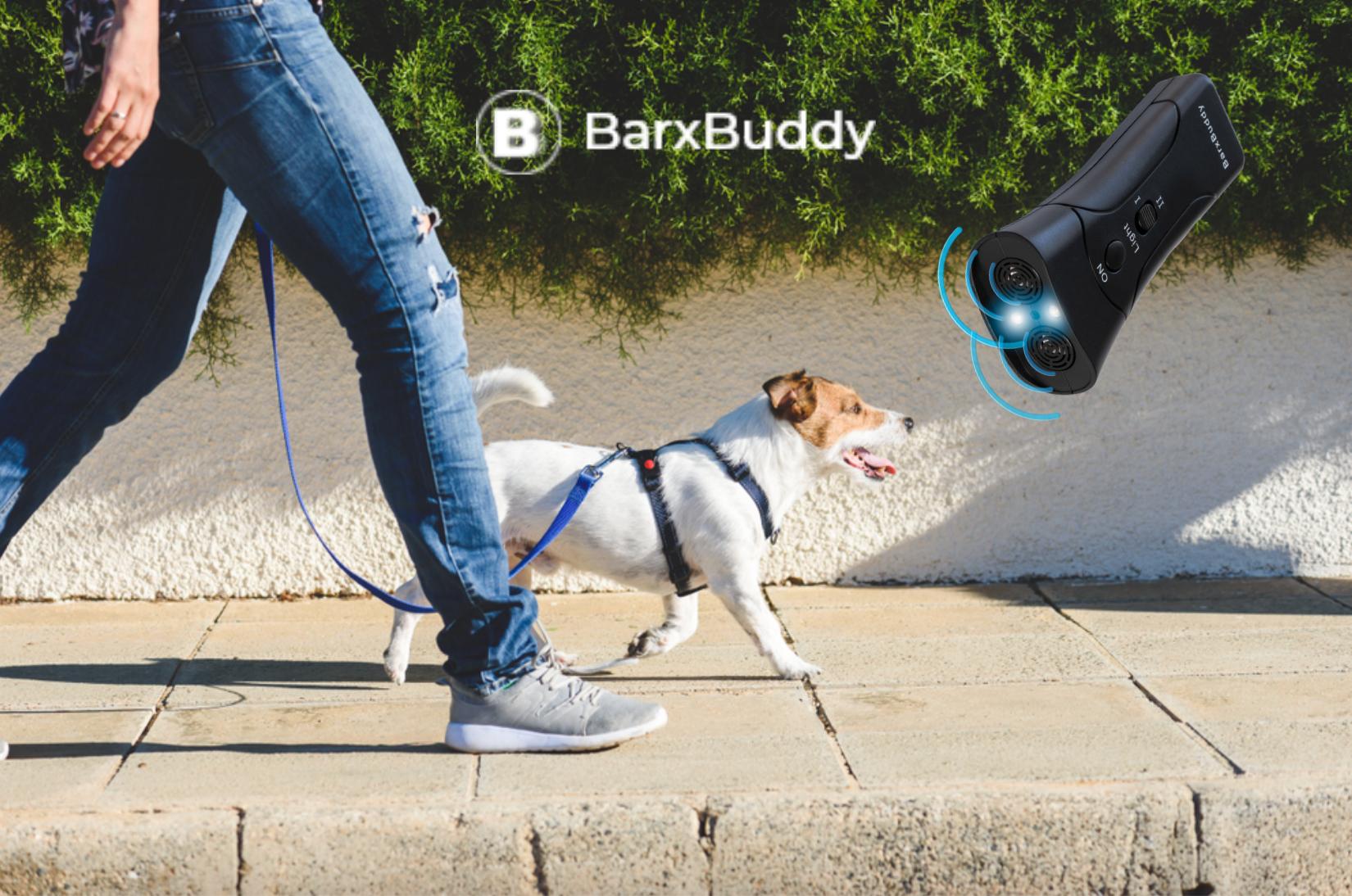 BarxBuddy Dog Training Tips